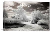 Winter in summer, Canvas Print