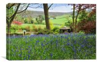 Bluebells at Arley, Canvas Print