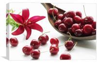 Sweet Cherries , Canvas Print