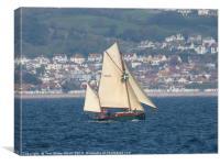 Moosk sailing in Torbay, Canvas Print