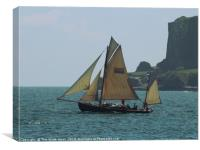 Moosk passing Berry Head, Canvas Print