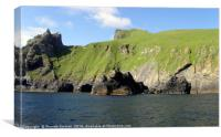 Boreray, St Kilda, Canvas Print