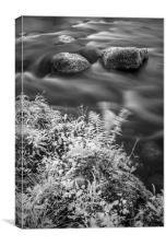 River Rathay, Canvas Print