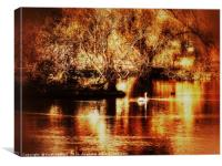 Golden Swan, Canvas Print