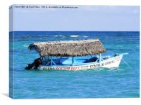 glass bottom boat, Canvas Print