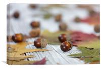 Autumn acorn background , Canvas Print