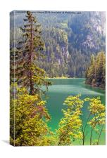 lake tovel in the dolomites, italy , Canvas Print