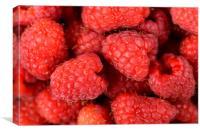 Fresh Red Raspberry Fruits Background, Canvas Print