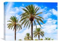 Green Island Palm Trees On Blue Sky, Canvas Print
