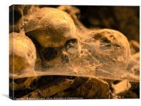 Middle age skulls, Canvas Print