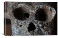 Monkey skull isolated , Canvas Print