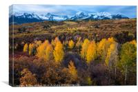 Dallas Divide Fall - Ridgway - Colorado, Canvas Print