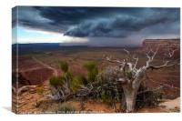 Moki Dugway Thunderstorm - Southern Utah, Canvas Print