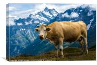 Grindelwald Cow - Bernese Alps - Switzerland, Canvas Print