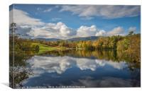 Autumn at Tarn Hows , Canvas Print