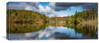 Tarn Hows Reflections, Canvas Print