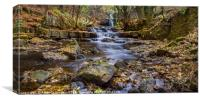 Gibsons Cave waterfalls., Canvas Print