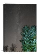 The Milky Way , Canvas Print