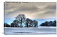 Winter at Loch Lomond, Canvas Print