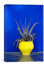 Yellow Pot, Marrakech, Canvas Print