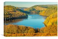 Llyn Brianne Reservoir in Autumn, Canvas Print