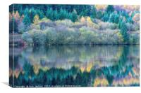 Trees reflected in Reservoir Brecon Beacons, Canvas Print