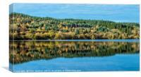 Tree Reflection Llwyn Onn Reservoir Brecon Beacons, Canvas Print