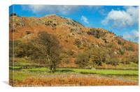 The Tilberthwaite Valley Lake District Cumbria, Canvas Print