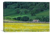 Littondale Flower Meadows Yorkshire Dales, Canvas Print
