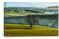 Cobblers Plain, Canvas Print