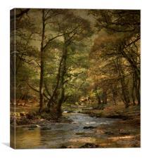 River Walkham , Canvas Print