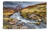 Mountain Stream in Autumn, Canvas Print