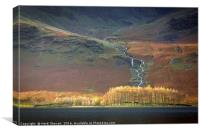 Larch Trees at Buttermere in the Lake District, Canvas Print