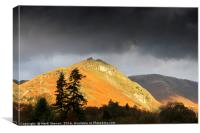 Lake District Autumn Beauty, Canvas Print