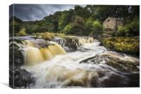 Cenarth Falls, Ceredigion, Wales , Canvas Print