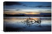River Tweed Sunset, Canvas Print