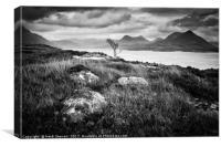 Loch Torridon View, Canvas Print
