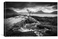 Little Falls overlooking Loch Torridon Scotland , Canvas Print