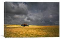 Barn and Barley, Canvas Print
