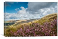 Heather in the Brecon Beacons National Park, Canvas Print