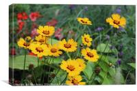 Bright Flower Bed, Canvas Print