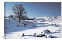 Frozen River Rannoch Moor, Canvas Print
