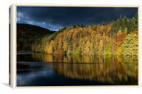 Perthshire Autumn, Canvas Print