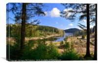 Achray Forest Drive Trossachs, Canvas Print