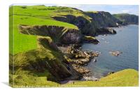 St Abbs Head, Canvas Print