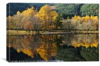 Loch Lubnaig autumn colours, Canvas Print