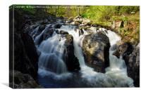 Black Linn Waterfall in spring, Canvas Print