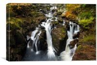 Black Linn Waterfall in autumn, Canvas Print