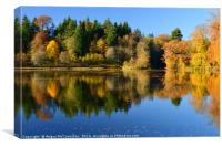 Penicuik Pond autumn colours 2016, Canvas Print