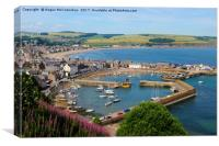 View across Stonehaven Harbour, Canvas Print